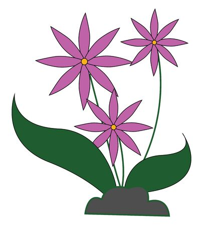 A pot of three pink flower with green leaves in it vector color drawing or illustration