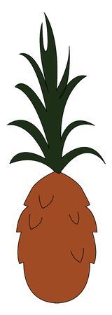 A pineapple which is not ripen with green leaves vector color drawing or illustration  イラスト・ベクター素材