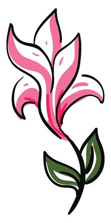 A sketch of a beautiful pink flower with green leaves vector color drawing or illustration