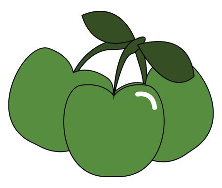 A bunch of little green apple vector color drawing or illustration Illusztráció