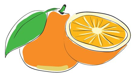 A glass of orange juice which is freshly prepared vector color drawing or illustration Illusztráció