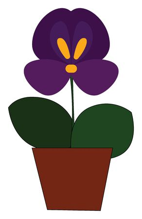 A pot of pansy plant with a beautiful pansy flower vector color drawing or illustration