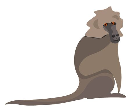 Clipart of a large Old World ground-dwelling monkey in shades of brown with a long doglike black snout and two red-colored eyes  vector  color drawing or illustration Illustration