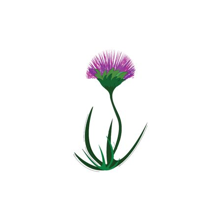 A beautiful purple flower with green leaves vector color drawing or illustration