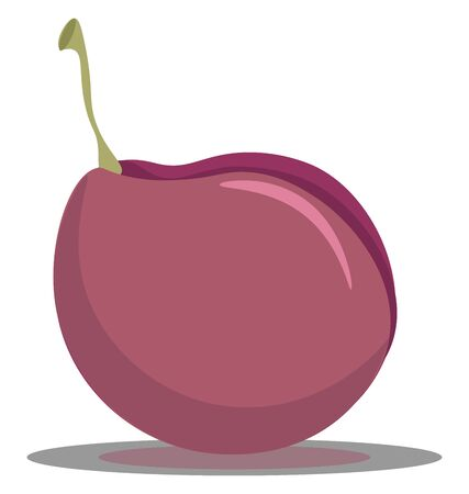 A delicious pink plum fruit vector color drawing or illustration