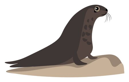 A brown seal eagerly looking into the ocean from the shore vector color drawing or illustration