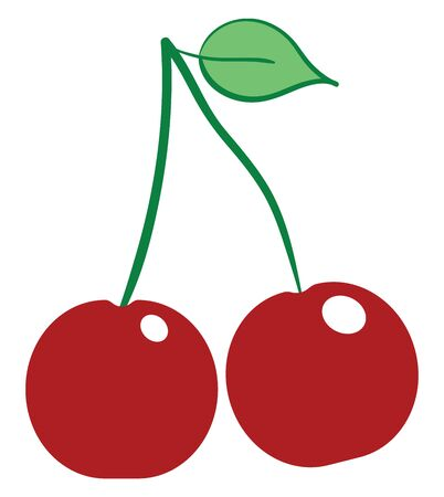 Two small cherries in red color which are fresh vector color drawing or illustration Ilustracja