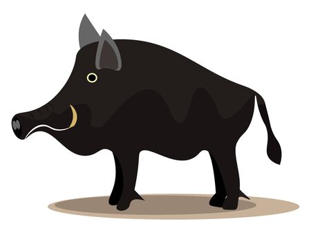 A large black wild pig with sharp horns looking wild to attack vector color drawing or illustration