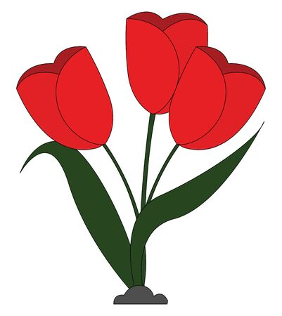Clipart of beautiful red flowers with elongated green leaves grown above the soil  vector  color drawing or illustration Ilustração
