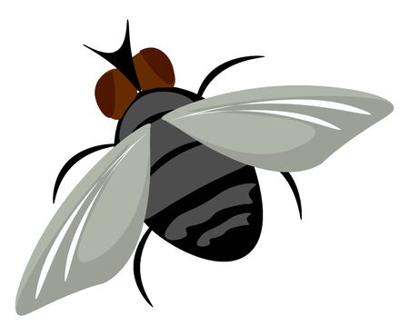 Painting of a brown housefly with black stripes on its oval-shaped grey body flapping its wings is at flight  vector  color drawing or illustration