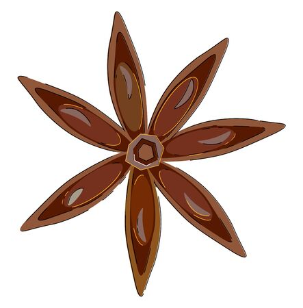 Portrait of the spice  anise  brown in color and just like 7-pointed star adds flavor and aroma to the dishes and recipes  vector  color drawing or illustration Ilustracja