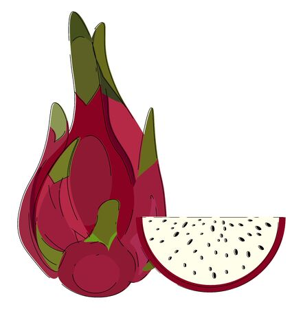 Clipart of the whole dragon fruit red in color with a short stout green stalk lies closer to the half-cut fruit that exposes the black seeds  vector  color drawing or illustration