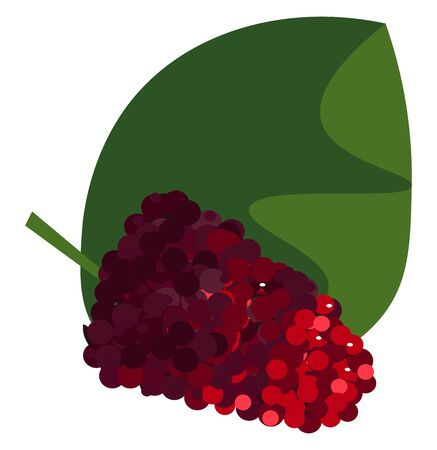 Clipart of a bunch of red-colored mulberry fruits on a broad green leaf  vector  color drawing or illustration