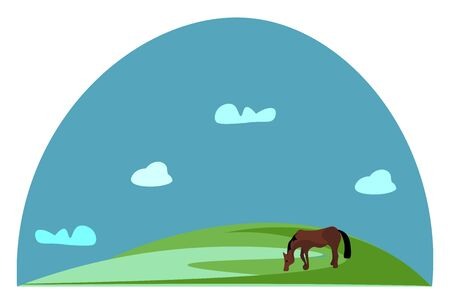 Portrait of a grazing brown horse in green grasslands and a clear blue sky with few clouds complete the background  vector  color drawing or illustration Ilustração