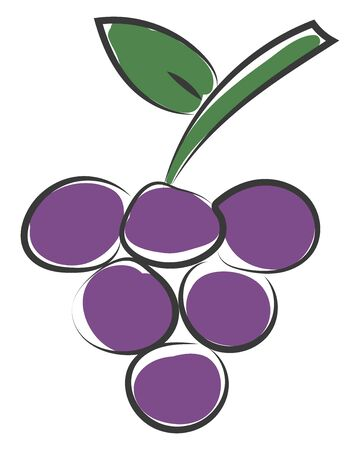 Clipart of a bunch of purple-colored and round grapes on a slender stalk with a leaf  vector  color drawing or illustration Illustration