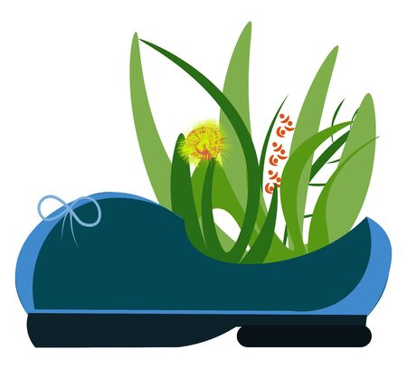 Painting of a plant blossomed with yellow flowers in a blue lady's shoe looks lovely and beautiful vector color drawing or illustration
