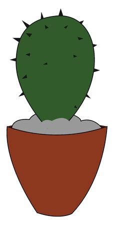 A small green cactus plant with few thorns on an earthen pot provides extra style to the surrounding  vector  color drawing or illustration Ilustrace