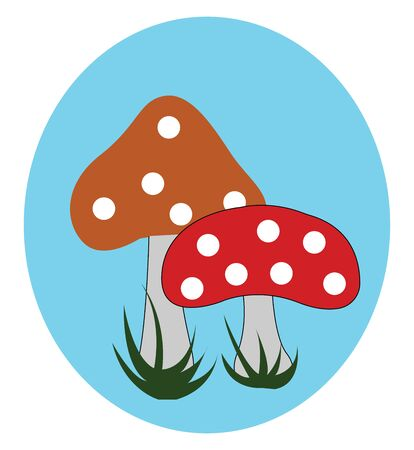 Portrait of two mushrooms with spherical white spots on the distinctive red caps  grey stems  grown above green grasslands  over blue background  vector  color drawing or illustration Ilustração