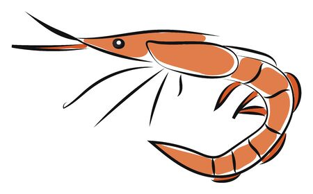Clipart of an orange-colored small stalk-eyed free-swimming crustacean with an elongated body with long narrow muscular tails  long whiskers  and slender legs  vector  color drawing or illustration