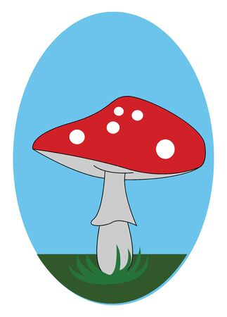 A highly regarded edible mushroom with spherical white balls on the distinctive red cap  grey-colored gills  and partial veil  vector  color drawing or illustration