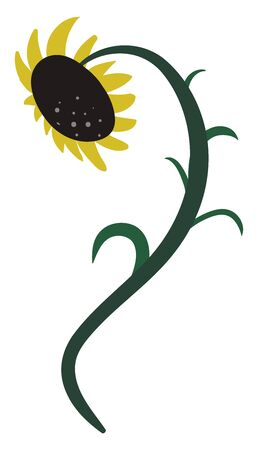 Drawing of a blooming sunflower that has tilt during the day to face the sun  vector  color drawing or illustration