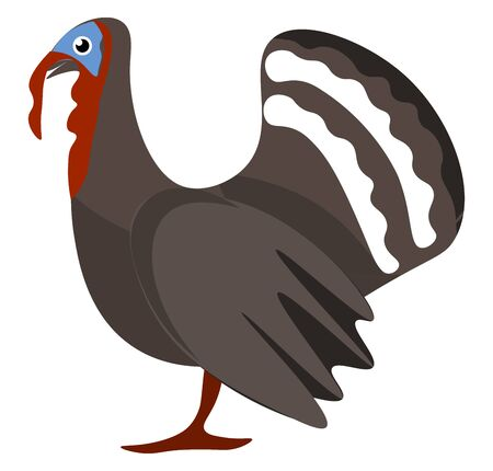 A Turkey bird with a blue bald head and a distinctive red fleshy wattle or protuberance that hangs from the top of the beak vector color drawing or illustration
