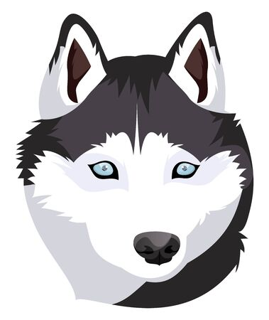 Siberian Husky illustration vector on white background