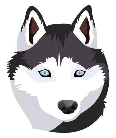 Siberian Husky illustration vector on white background