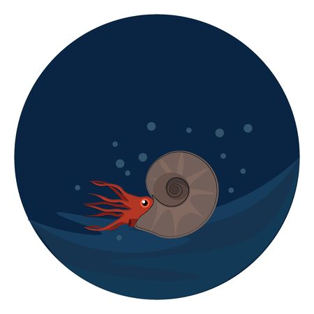 An extinct group of marine ammonite which is in under water , vector, color drawing or illustration.
