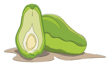A full chayote and a sliced chayote which is sliced half , vector, color drawing or illustration.