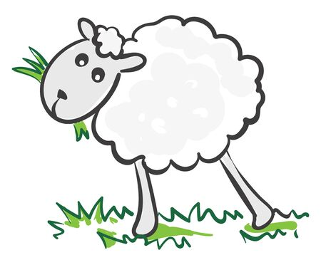 A A sheep eating on a grass , vector, color drawing or illustration.