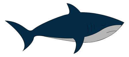 A shark with a streamlined body, forked tail, triangular-like fins, blue and white, upper and under parts, respectively, swims while its eye closed, vector, color drawing or illustration.