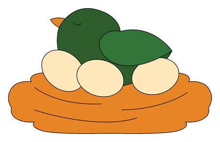 A cute little green chick with orange bill relaxing on a nest with three eggs while eyes closed over white background viewed from the side, vector, color drawing or illustration.