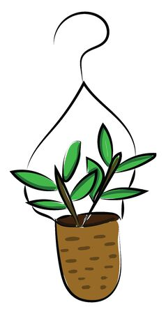 A smart hanging brown pot with plants undoubtedly enhance the existing decor of any room in the home set isolated on white background viewed from the front, vector, color drawing or illustration.