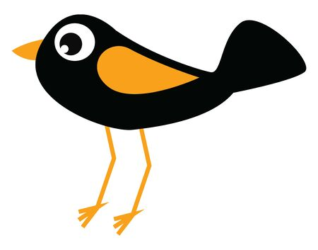 A black bird with yellow wing, beak and legs, with big eyes, with a big tail, vector, color drawing or illustration. Çizim