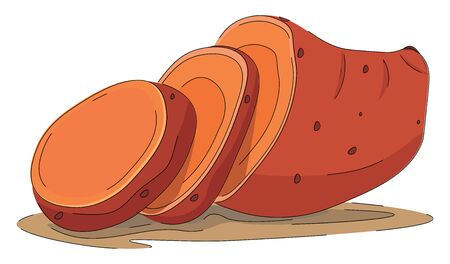 Cartoon picture of the brown sweet potato half-cut into slices and its shadow isolated over white background viewed from the side, vector, color drawing or illustration. Иллюстрация