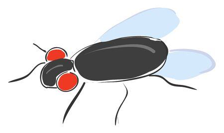 A black fly with red eyes, five legs, and two wings, vector, color drawing or illustration. Ilustracja