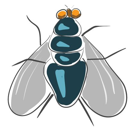 A dark blue fly with six legs, yellow eyes, and two wings, vector, color drawing or illustration.