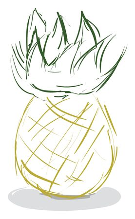 A drawing of an pineapple, vector, color drawing or illustration.