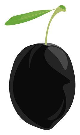 A black olive with a leaf, vector, color drawing or illustration.