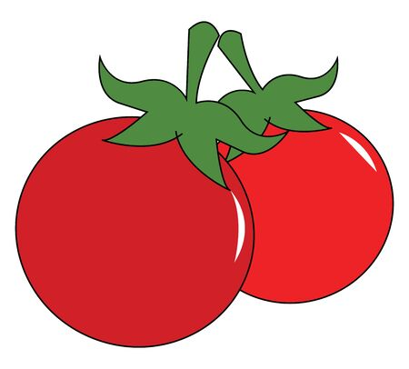 Two red cherry tomatoes, vector, color drawing or illustration.