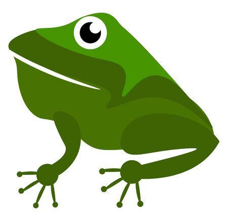 A green frog with big eye, mouth slightly open, vector, color drawing or illustration.