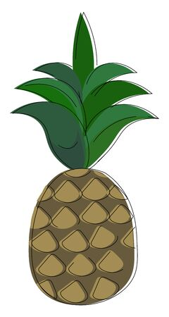 An illustration of a whole pineapple with green leaves, vector, color drawing or illustration.