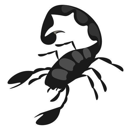 A black aggressive scorpion with a fat tail, vector, color drawing or illustration.