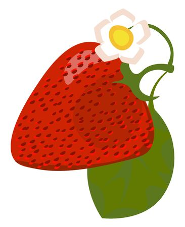 Clipart of a charming red strawberry and a jasmine flower with a leaf on top of it looks cute over a white background viewed from the side, vector, color drawing or illustration.