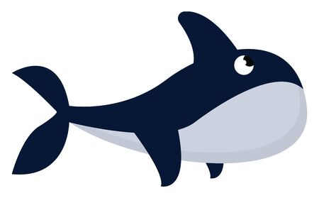 Whale is a very large mammal that lives in the sea that breathes air though a hole at top of its head., vector, color drawing or illustration.