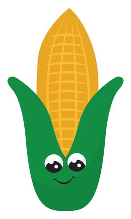 Corn is used to refer to crops such as wheat, maize, oat, and barley., vector, color drawing or illustration. 向量圖像