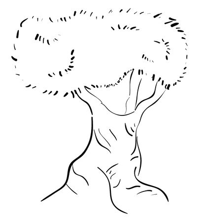 Silhouette of a tree with a single trunk grown to a considerable height bears lateral branches with leaves at some distance from the ground, vector, color drawing or illustration.