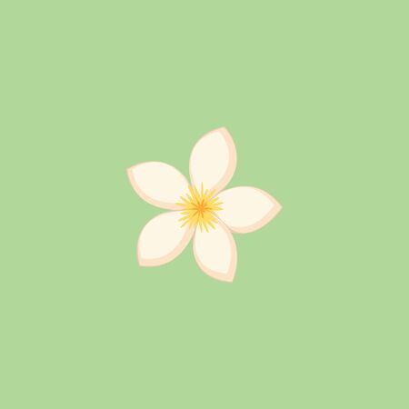 A white colored flower with five petals in a green background, vector, color drawing or illustration.