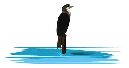 It is a large voracious dark-colored long-necked seabird, used in Asia to catch fish., vector, color drawing or illustration.